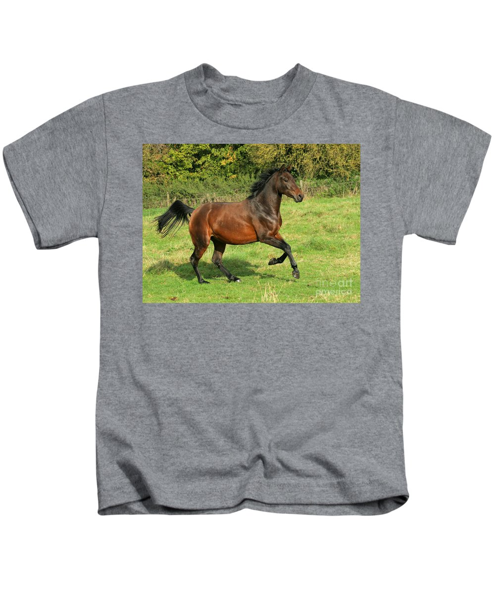 Horse Kids T-Shirt featuring the photograph Take-off by Angel Ciesniarska