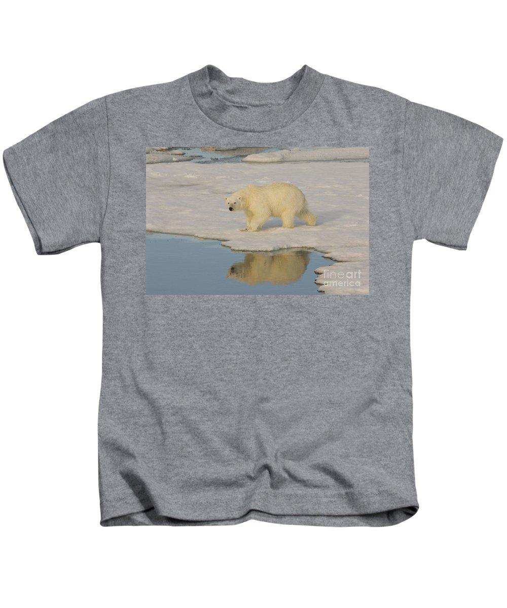 Polar Bear Kids T-Shirt featuring the photograph Polar Bear Walking On Ice by John Shaw