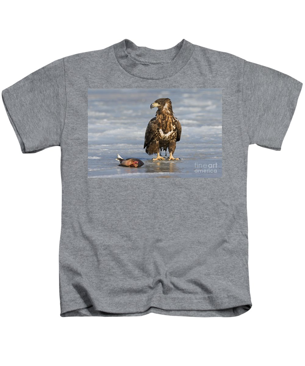 White-tailed Eagle Kids T-Shirt featuring the photograph 110714p303 by Arterra Picture Library