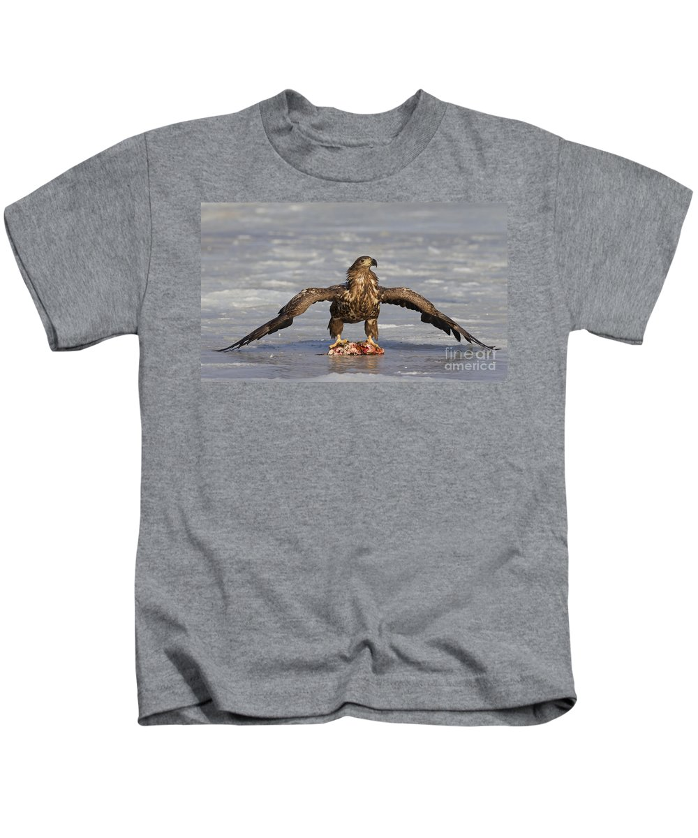 White-tailed Eagle Kids T-Shirt featuring the photograph 110714p312 by Arterra Picture Library