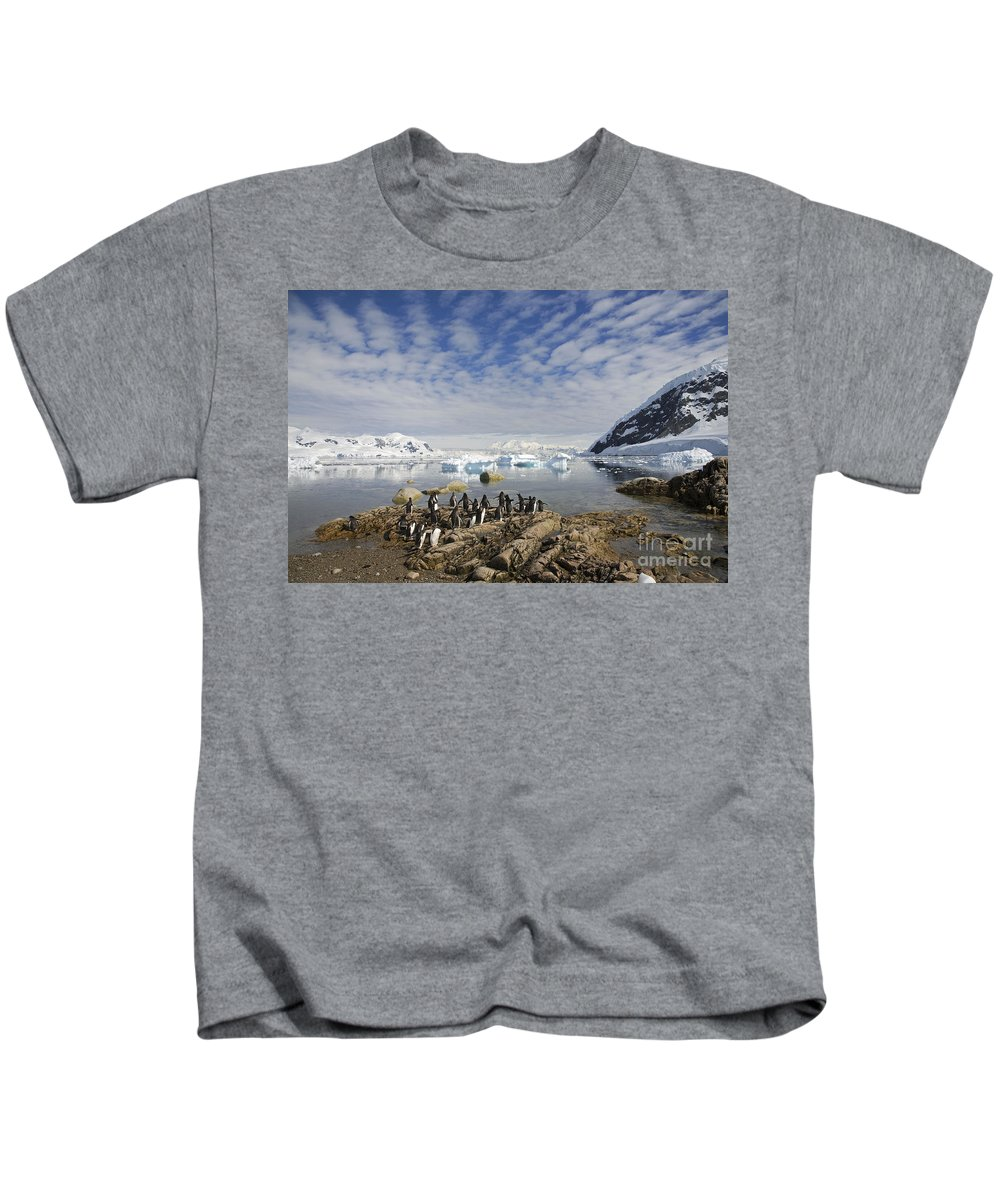 Neko Harbour Kids T-Shirt featuring the photograph 111130p132 by Arterra Picture Library