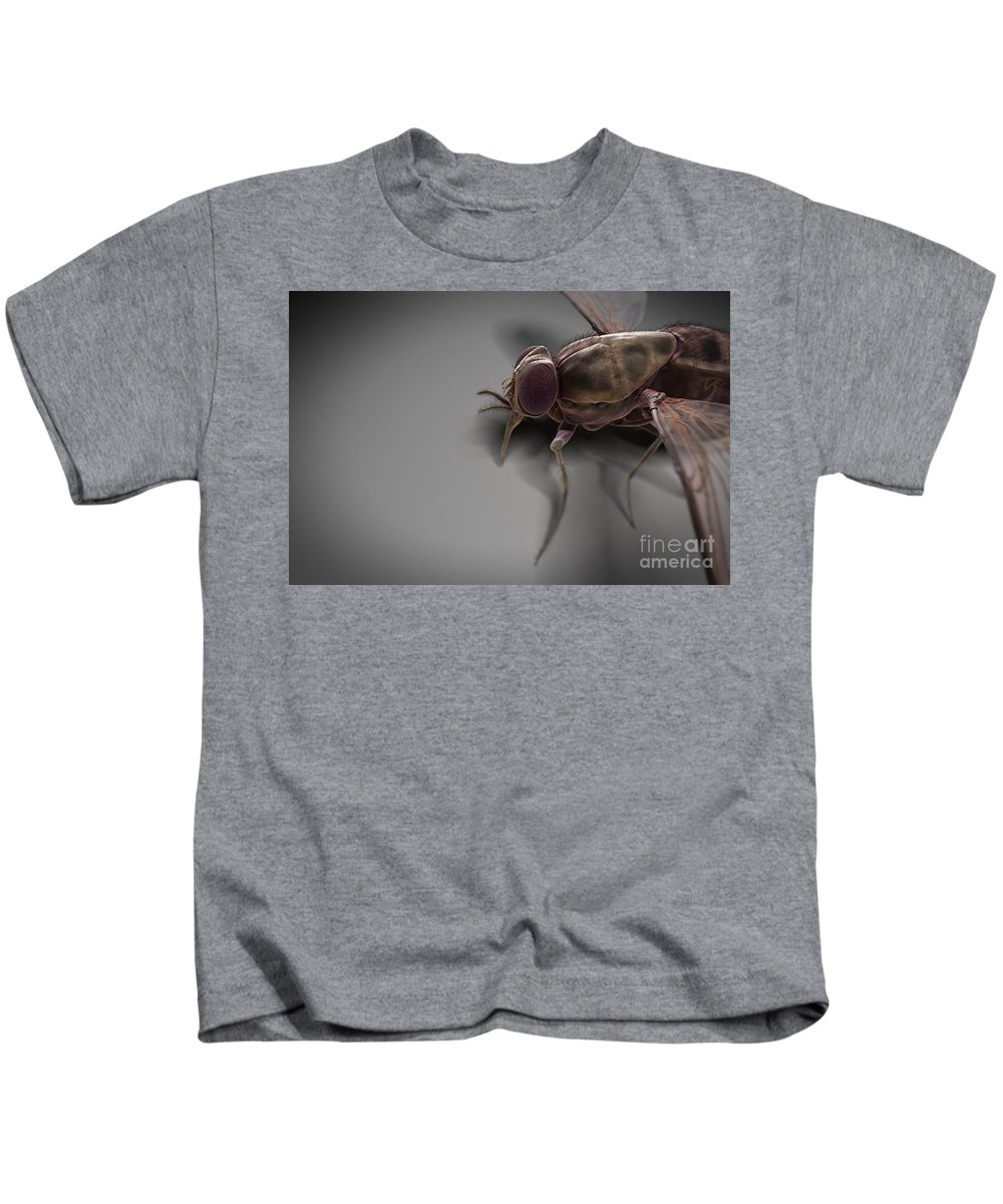 Haematophagy Kids T-Shirt featuring the photograph Tsetse Fly by Science Picture Co