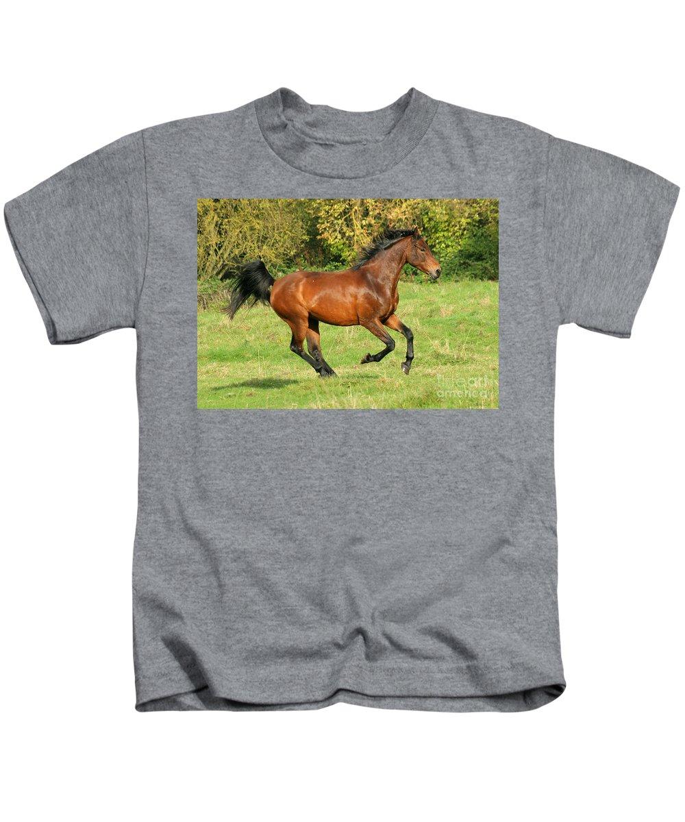 Horse Kids T-Shirt featuring the photograph Gallop by Angel Ciesniarska