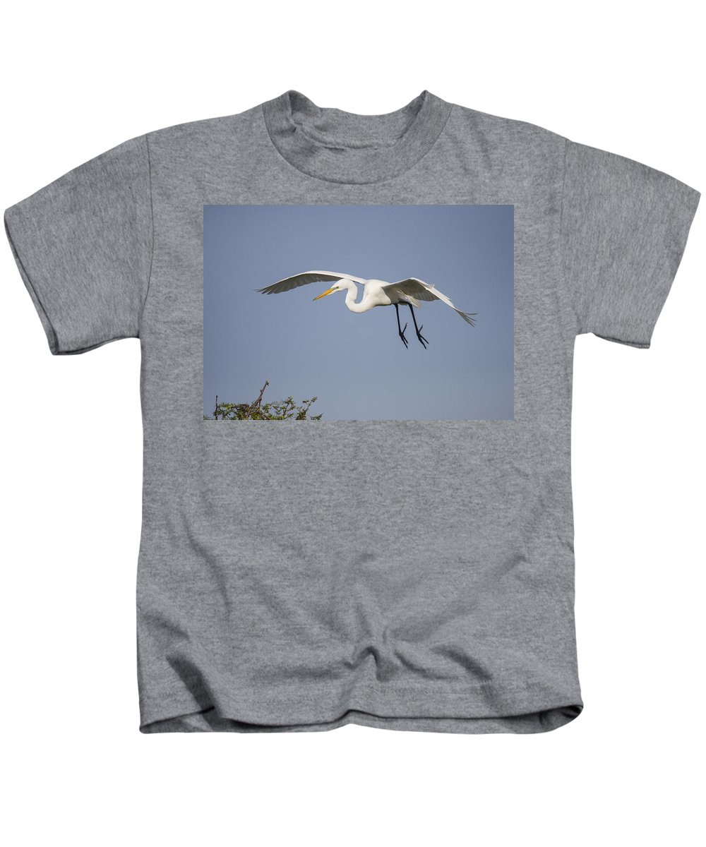 Doug Lloyd Kids T-Shirt featuring the photograph Great Egret by Doug Lloyd