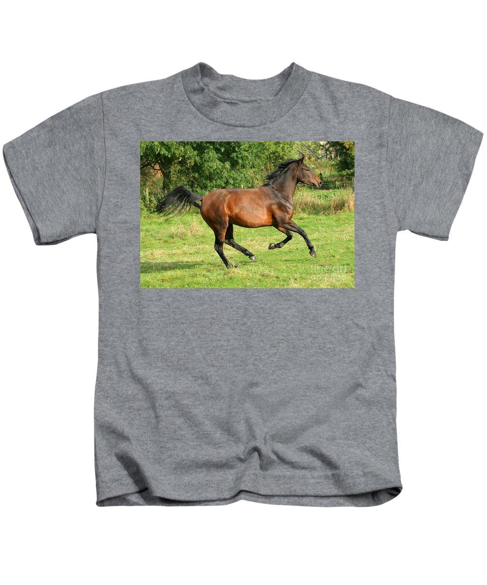 Horse Kids T-Shirt featuring the photograph Running Free by Angel Ciesniarska