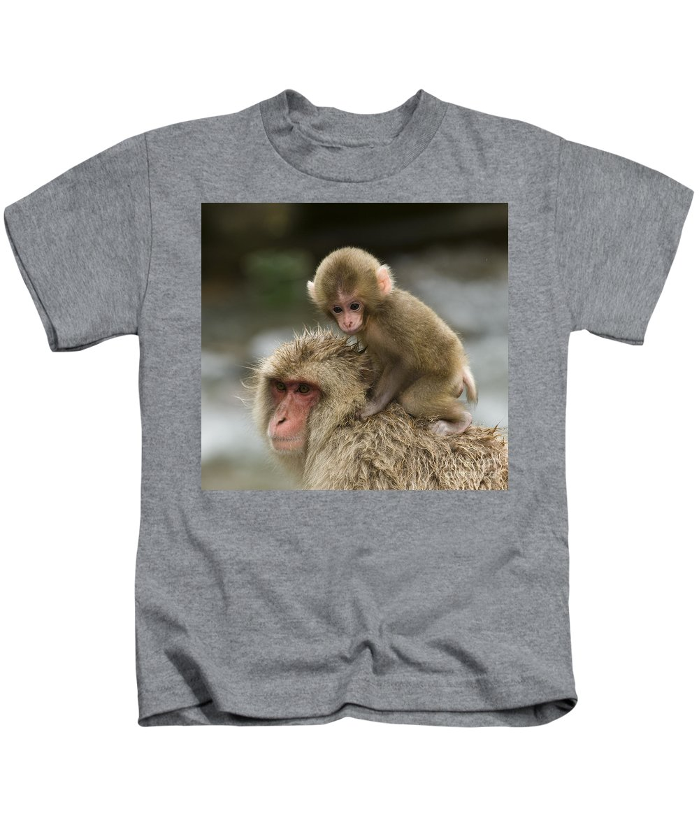 Asia Kids T-Shirt featuring the photograph Snow Monkeys Japan by John Shaw