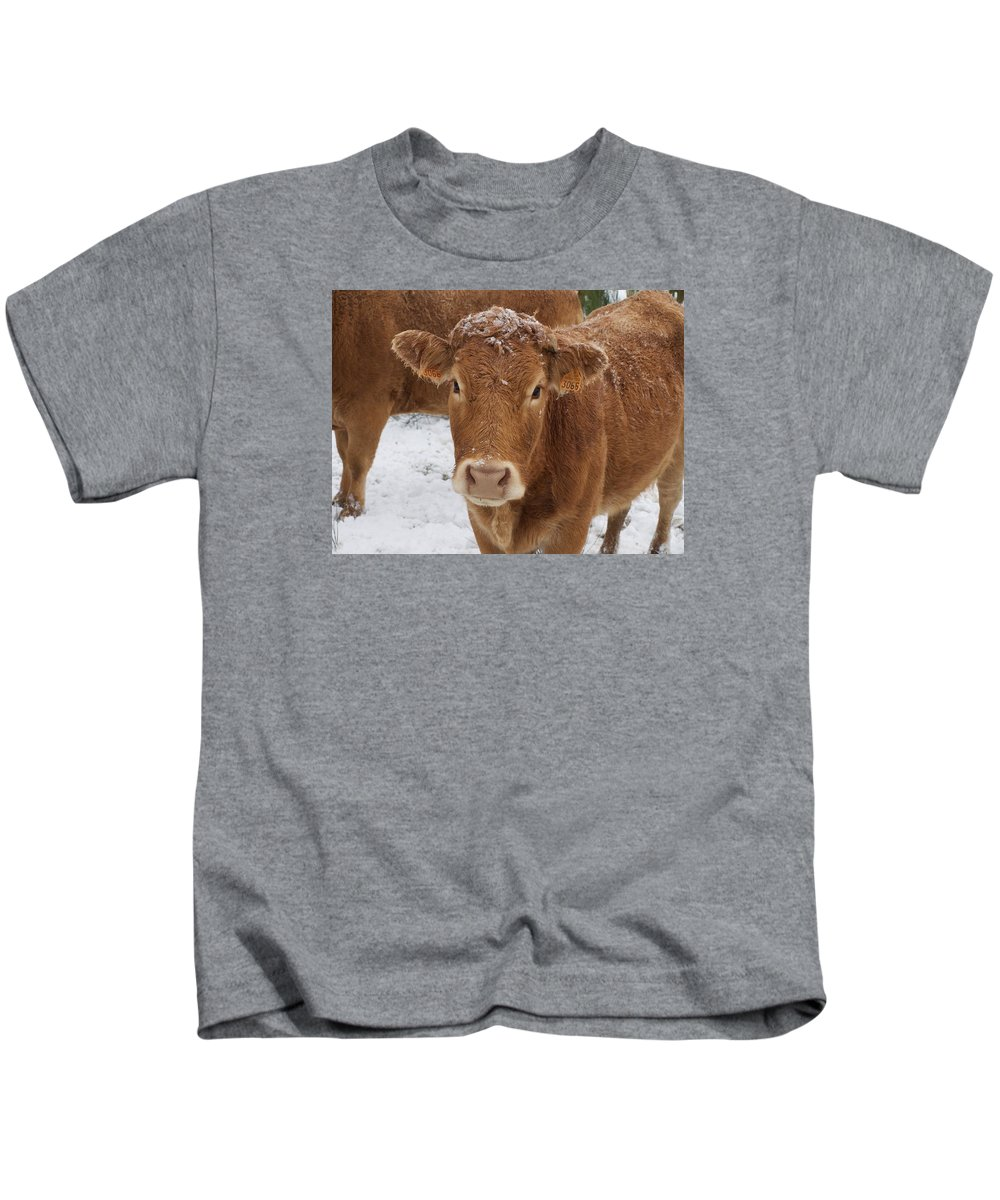 Cattle Kids T-Shirt featuring the photograph Cow by FL collection