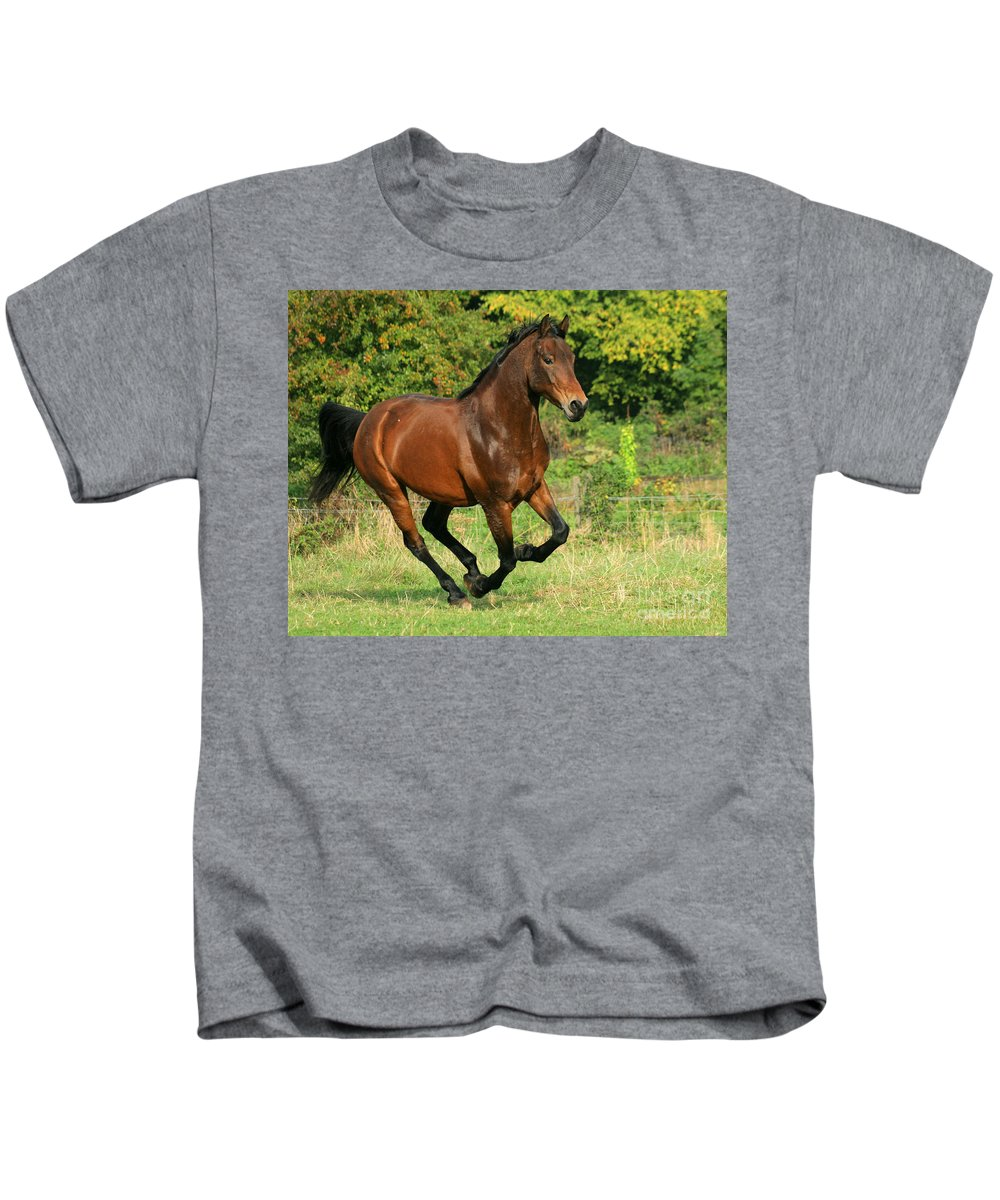 Horse Kids T-Shirt featuring the photograph Running Free by Angel Ciesniarska