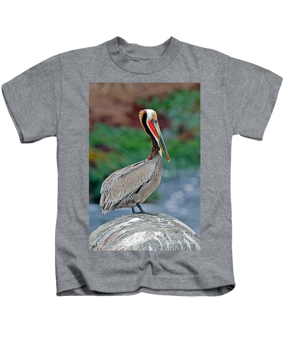 Brown Pelican Kids T-Shirt featuring the photograph Brown Pelican by Anthony Mercieca