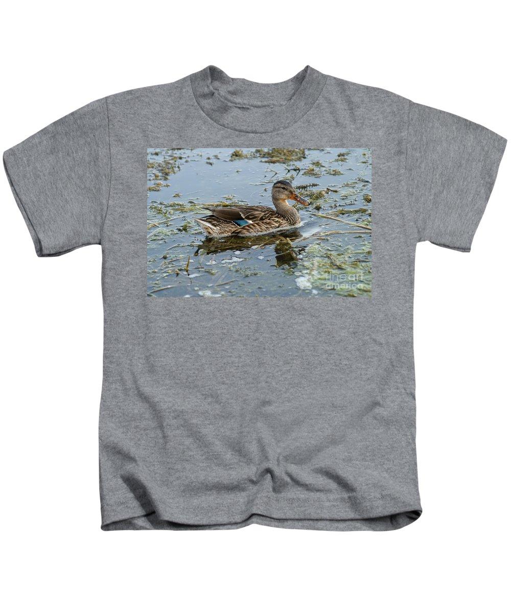 Mallard Duck Kids T-Shirt featuring the photograph Mallard Duck by Lori Tordsen