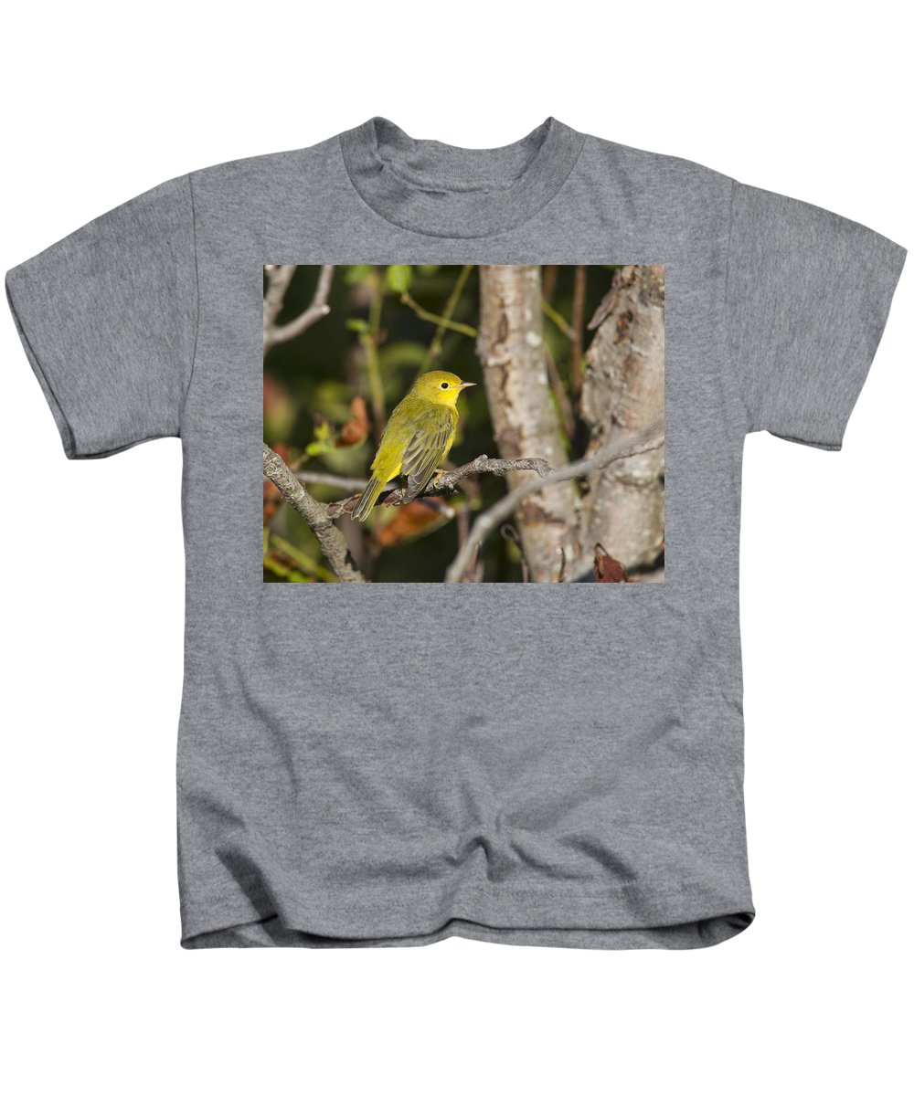 Doug Lloyd Kids T-Shirt featuring the photograph Sitting In The Morning Sun by Doug Lloyd