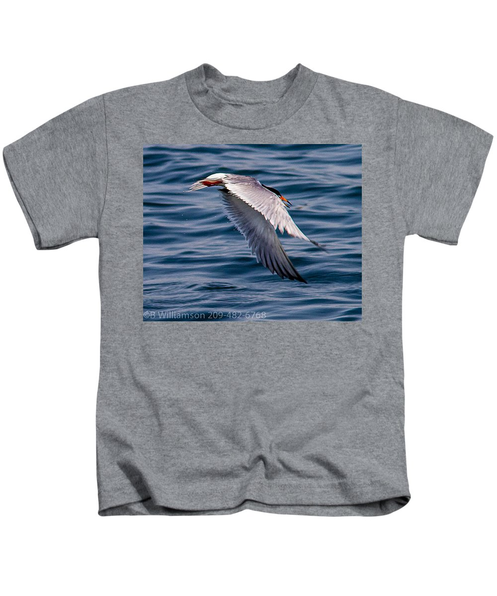 Common Tern Water Lake Outdoors Wildlife Birds Nature All Prints Are Available In Prints Kids T-Shirt featuring the photograph A Common Tern by Brian Williamson