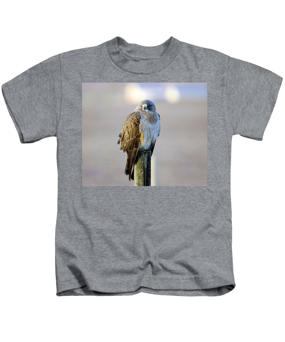 Fowl Kids T-Shirt featuring the photograph A Hawk On A Fence Post by Jeff Swan