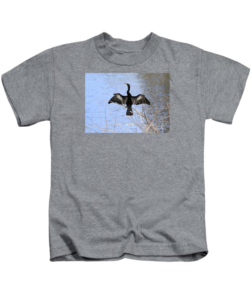 Anhinga Kids T-Shirt featuring the photograph Anhinga Over Blue Water by Carol Groenen