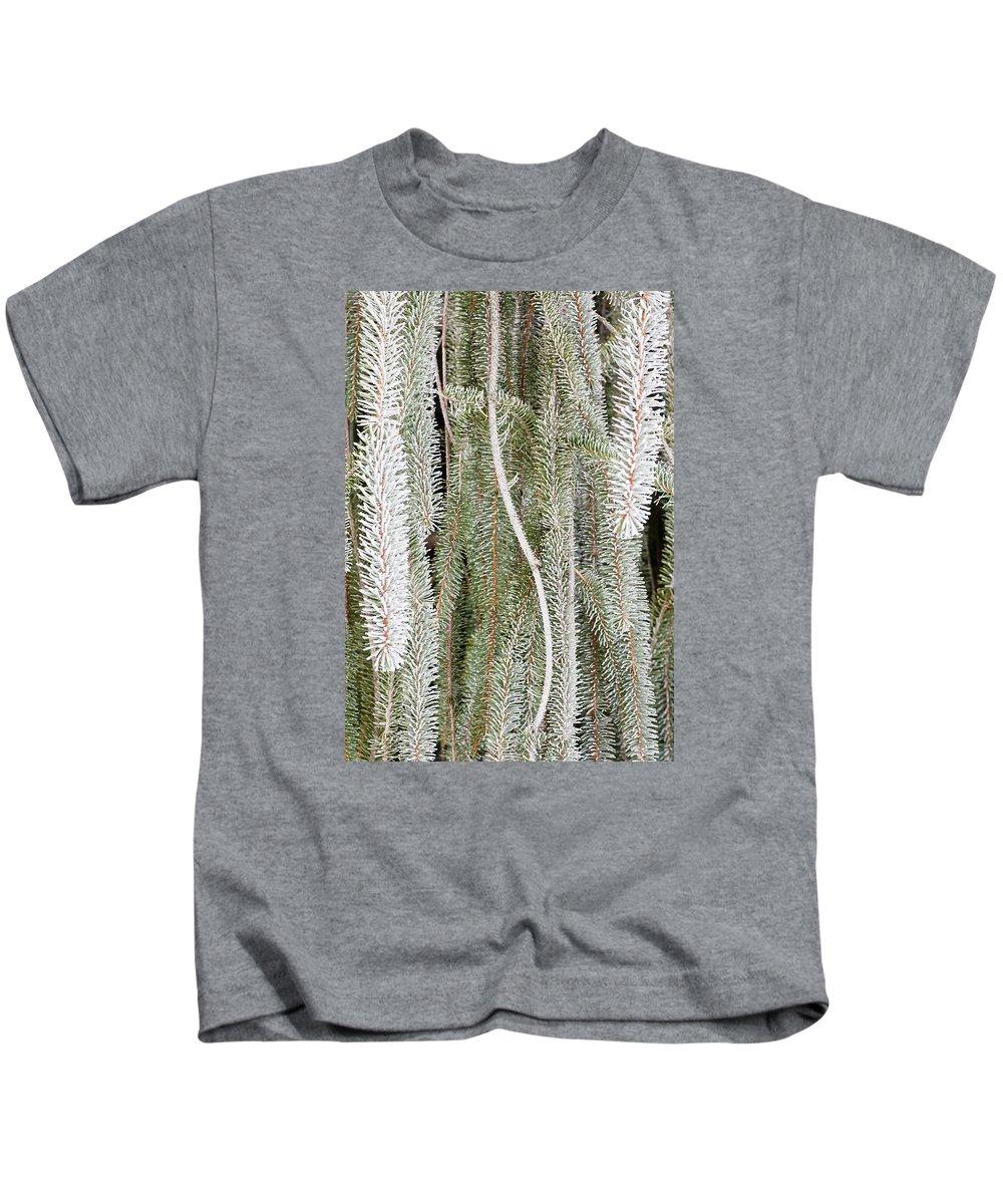 Arboretum Kids T-Shirt featuring the photograph Arboretum Hoar Frost 2 by Steven Ralser