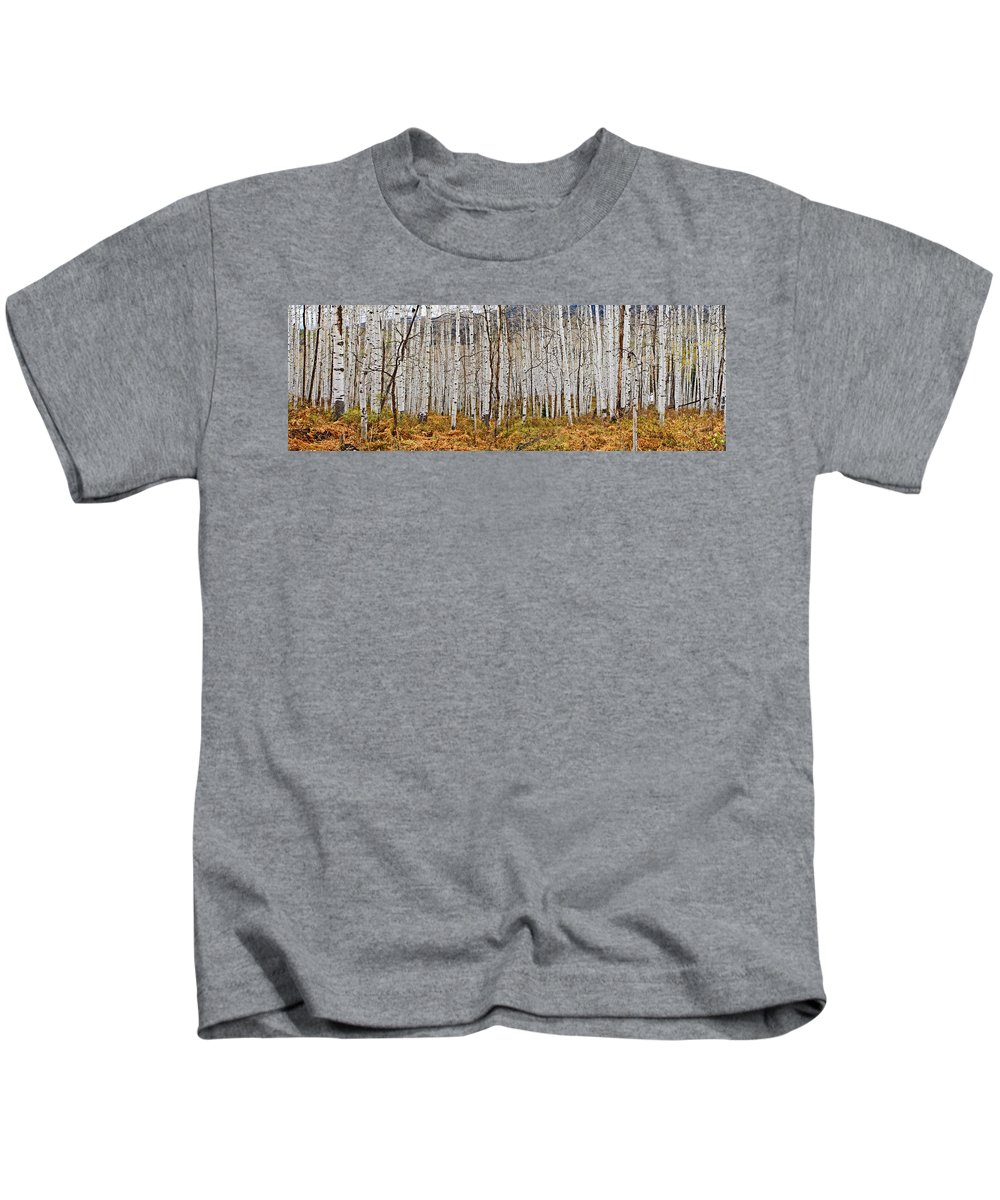 Colorado Photographs Kids T-Shirt featuring the photograph Aspen And Ferns by Gary Benson