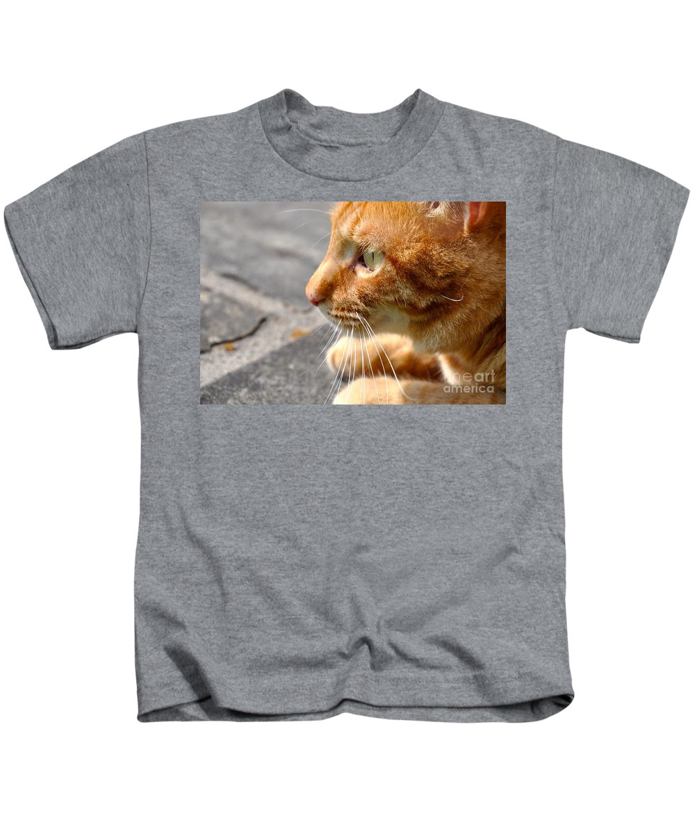 Cat Kids T-Shirt featuring the photograph Attentive by Christina McKinney