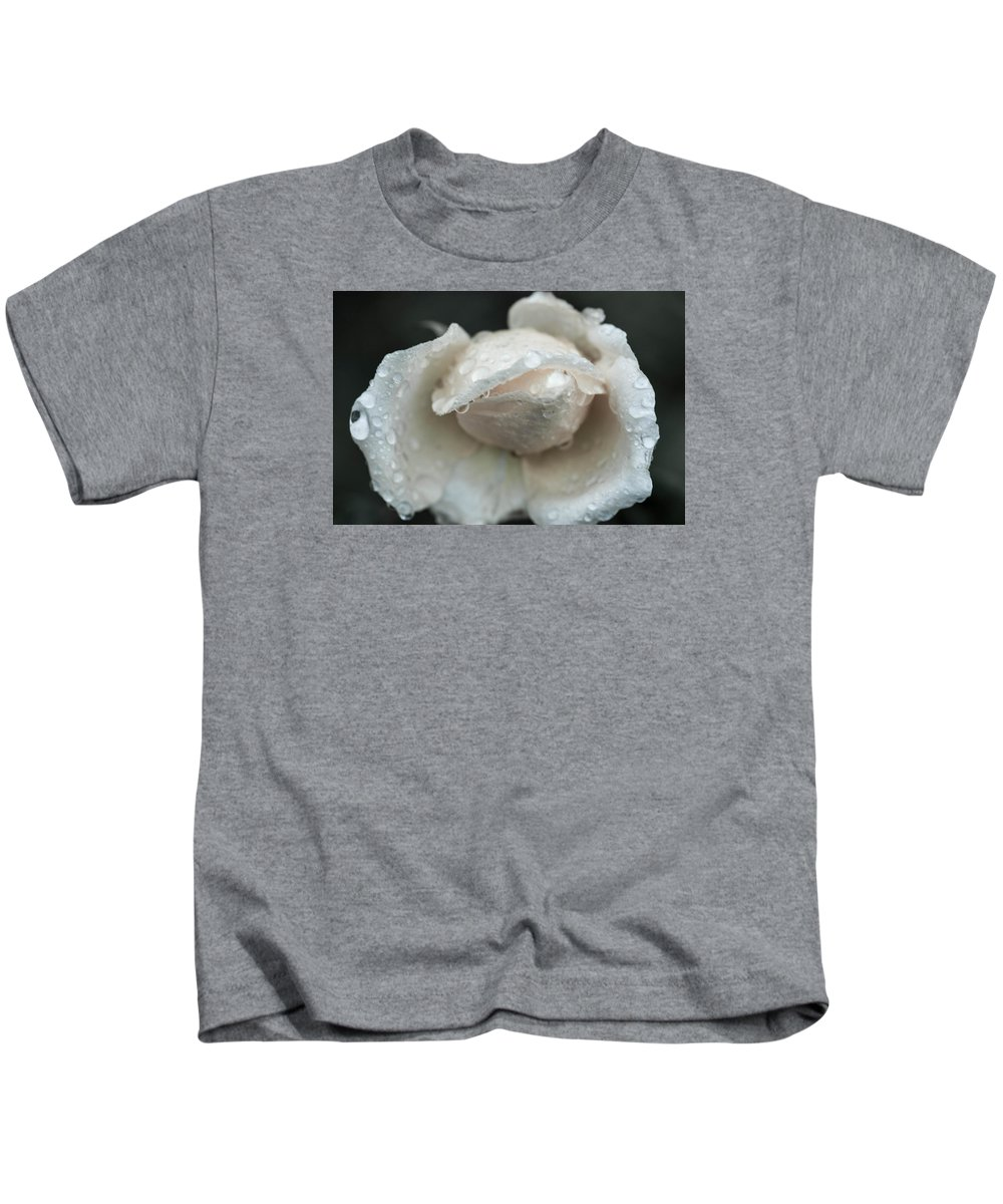 Roses Kids T-Shirt featuring the photograph Autumn Roses And Rain by Miguel Winterpacht