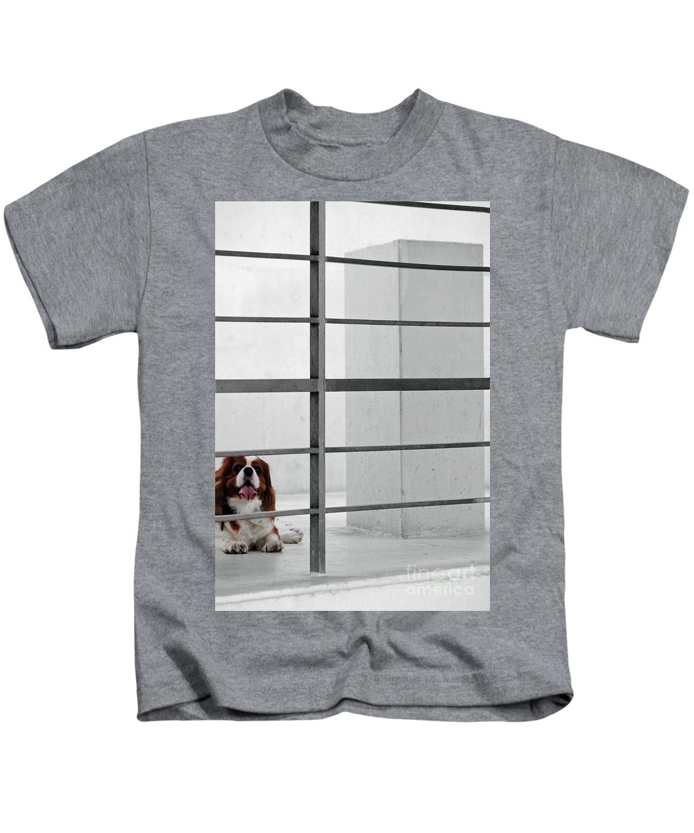 Dog Kids T-Shirt featuring the photograph Awaiting The Master by Jost Houk