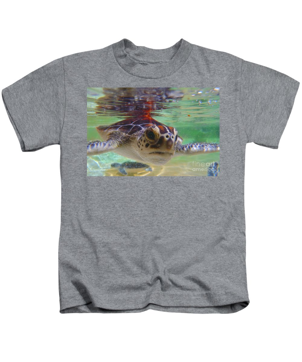Turtle Kids T-Shirt featuring the photograph Baby Turtle by Carey Chen