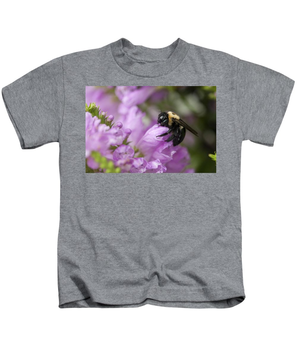 Physostegia Leptophylla Kids T-Shirt featuring the photograph Bee Hug by Kathy Clark