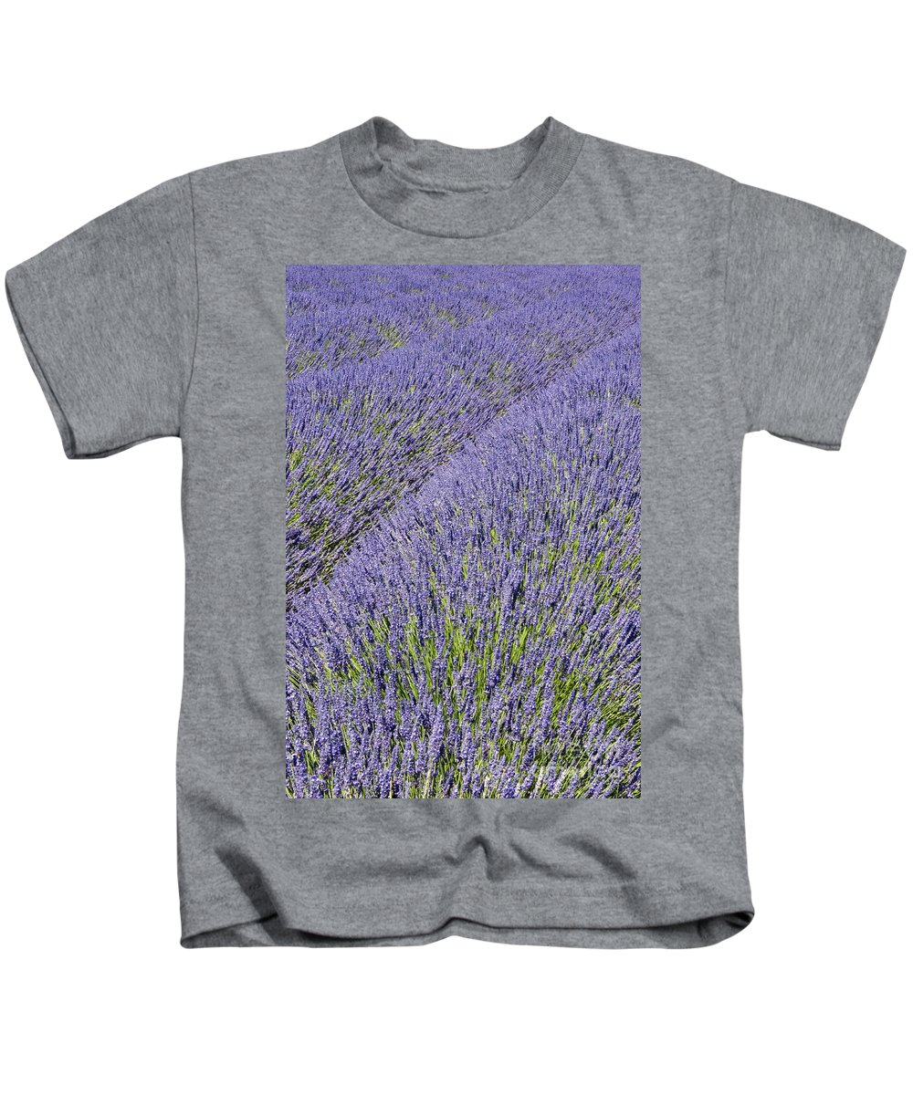 Provence Kids T-Shirt featuring the photograph Blowing In The Wind by Bob Phillips