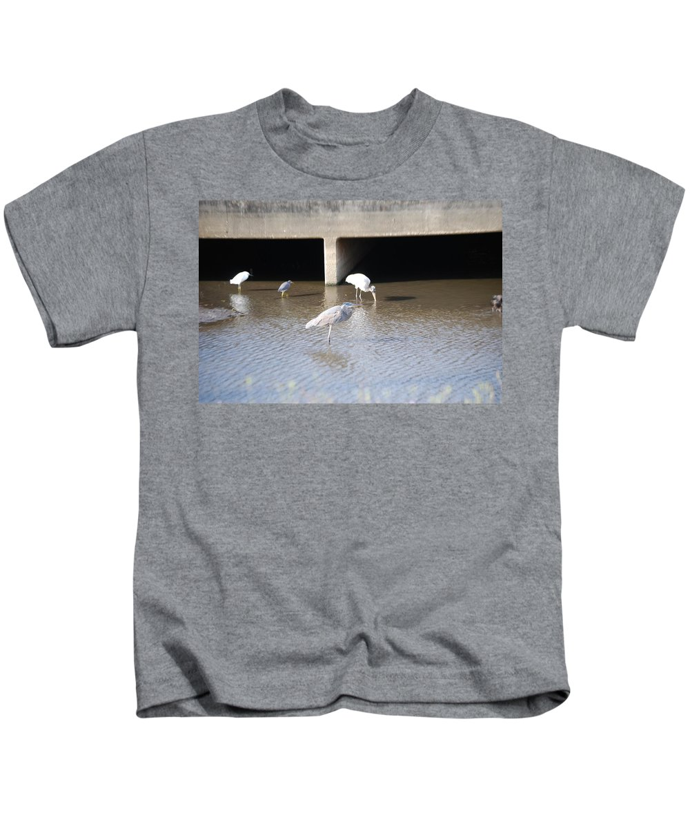 Group Feeding Hole Kids T-Shirt featuring the photograph Blue Huron by Robert Floyd