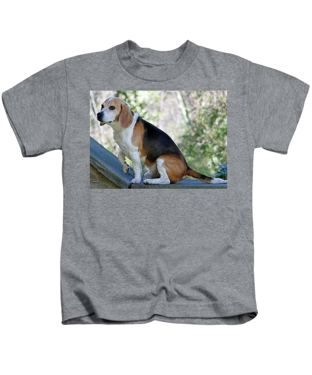 Animals Kids T-Shirt featuring the photograph Buddy by Lisa Phillips