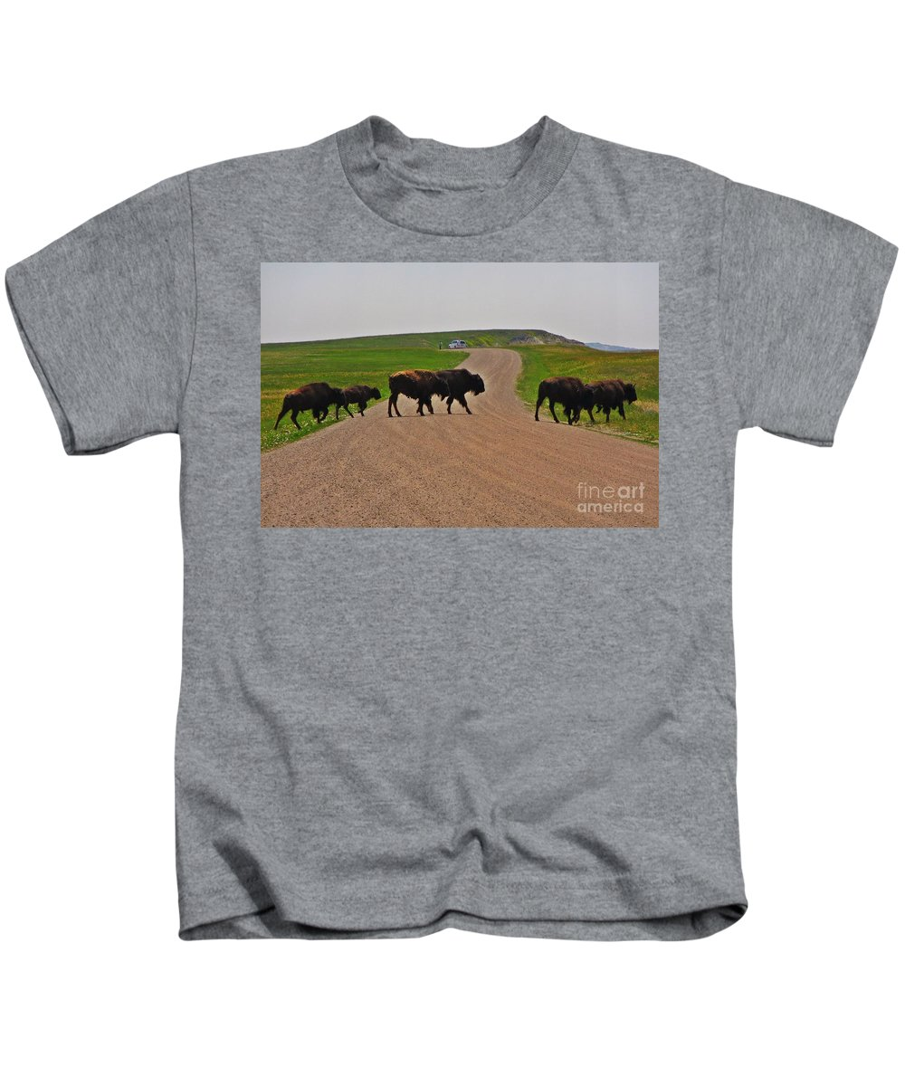 Buffalo Crossing Kids T-Shirt featuring the photograph Buffalo Crossing by John Malone