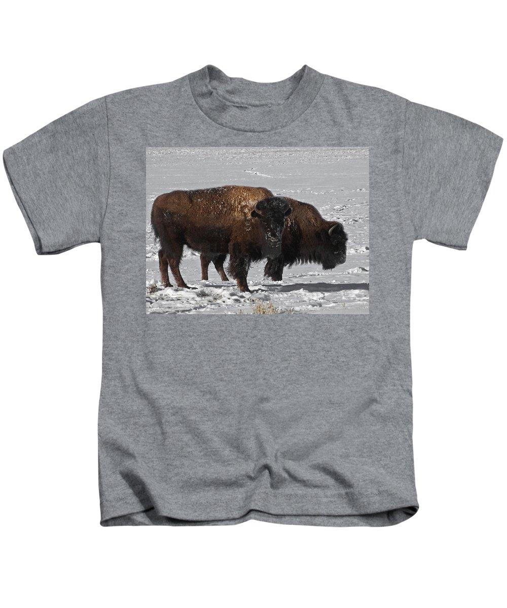 Buffalo Kids T-Shirt featuring the photograph Buffalo In Snow by Ernie Echols