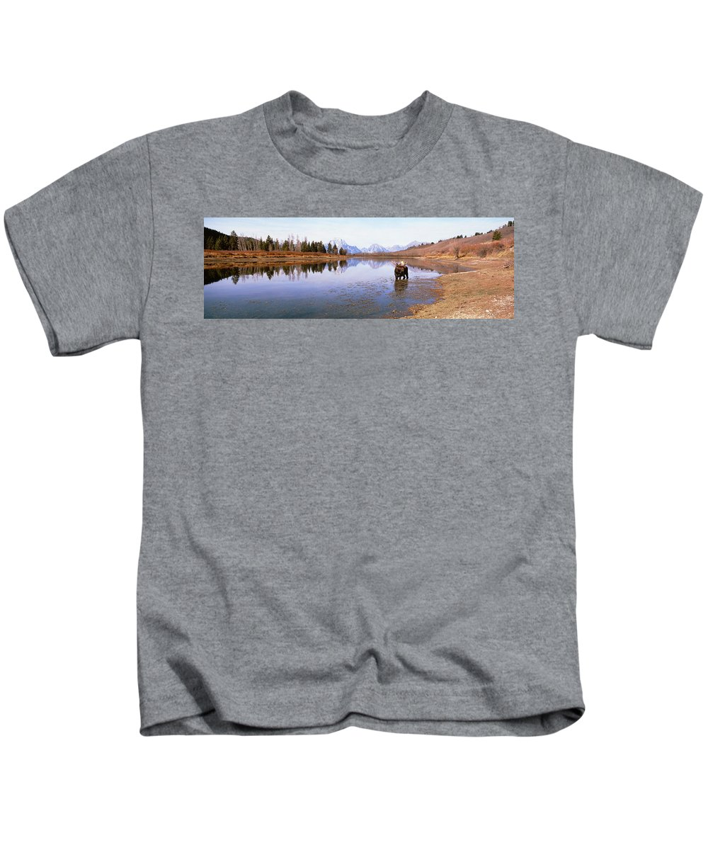 Photography Kids T-Shirt featuring the photograph Bull Moose Grand Teton National Park Wy by Panoramic Images