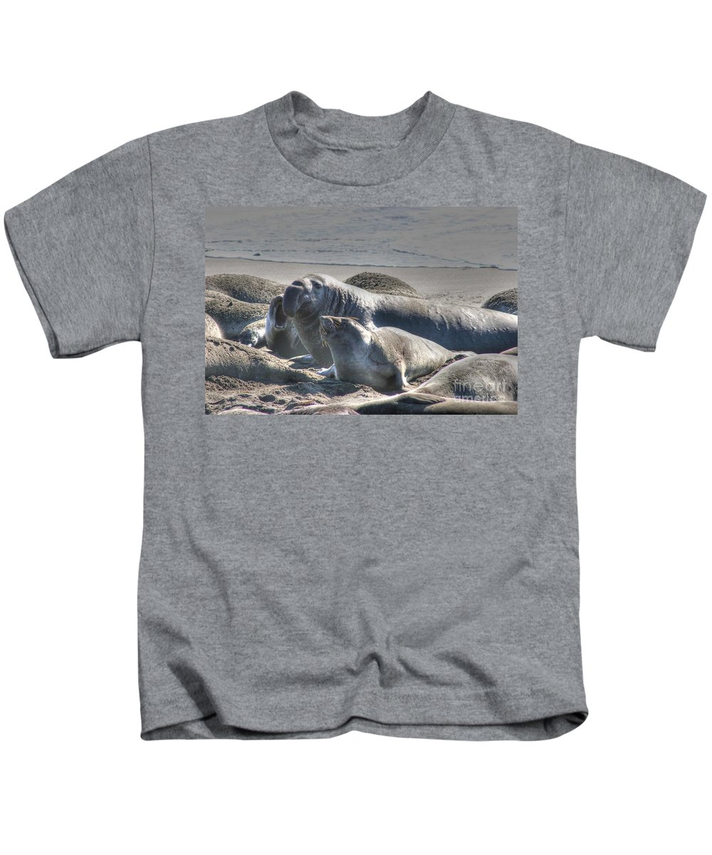 Bull Seal Kids T-Shirt featuring the photograph Bull Seal by Tap On Photo