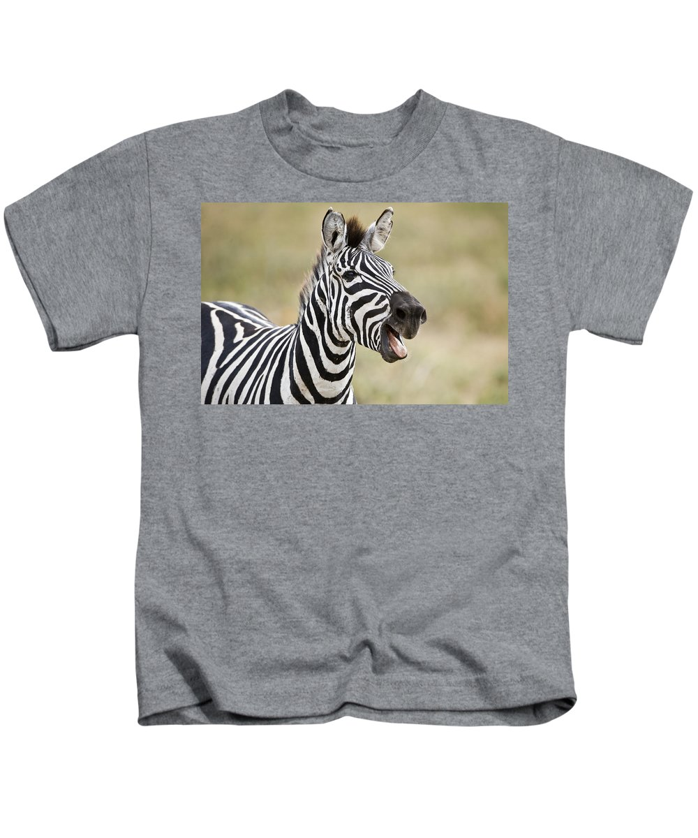 Photography Kids T-Shirt featuring the photograph Burchells Zebra Equus Quagga Burchellii by Panoramic Images
