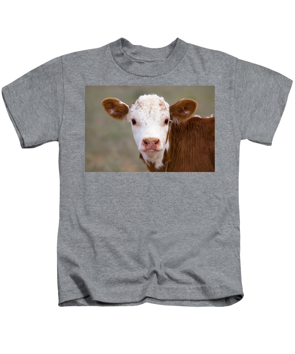 Photography Kids T-Shirt featuring the photograph Calf Portrait by Panoramic Images
