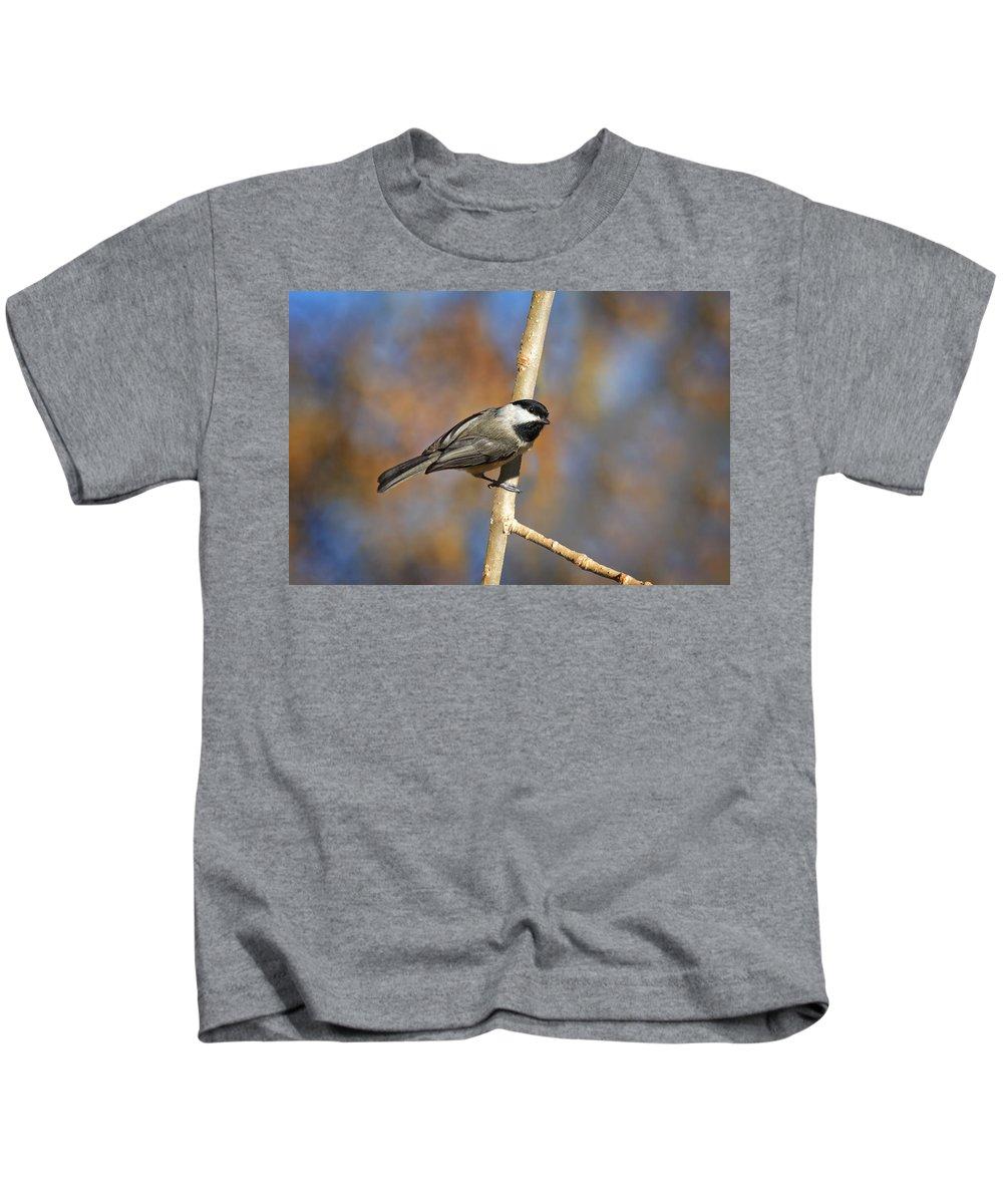 Carolina Chickadee Kids T-Shirt featuring the photograph Carolina Chickadee by Jemmy Archer