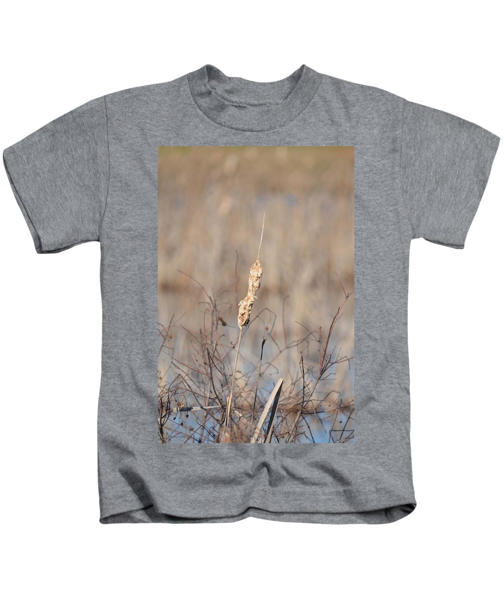 Cattail Gold Kids T-Shirt featuring the photograph Cattail Gold by Maria Urso