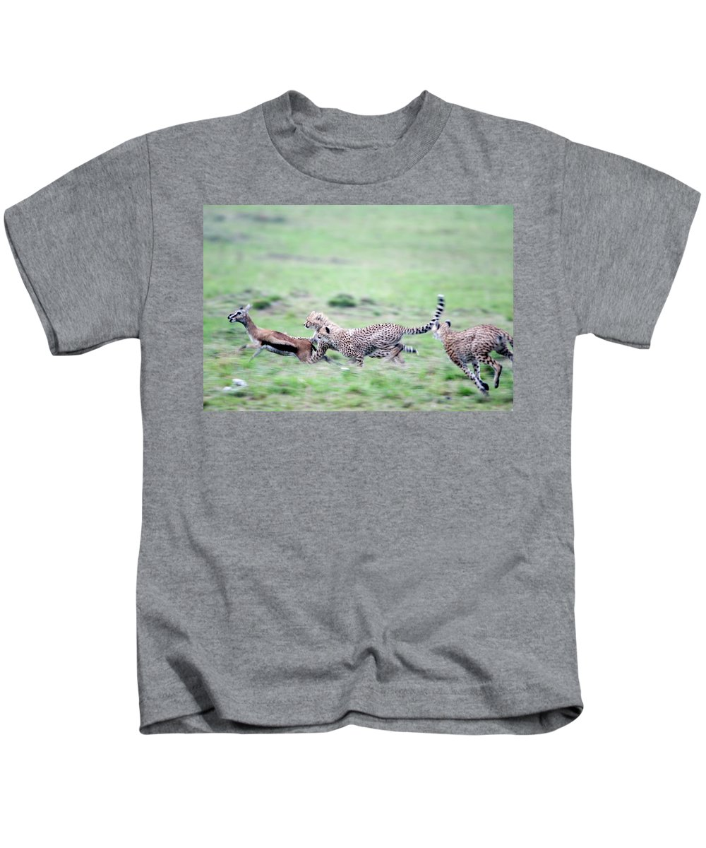 Photography Kids T-Shirt featuring the photograph Cheetahs Acinonyx Jubatus Chasing by Animal Images