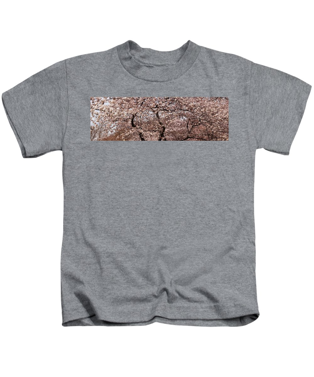 Photography Kids T-Shirt featuring the photograph Cherry Blossom Trees In Potomac Park by Panoramic Images