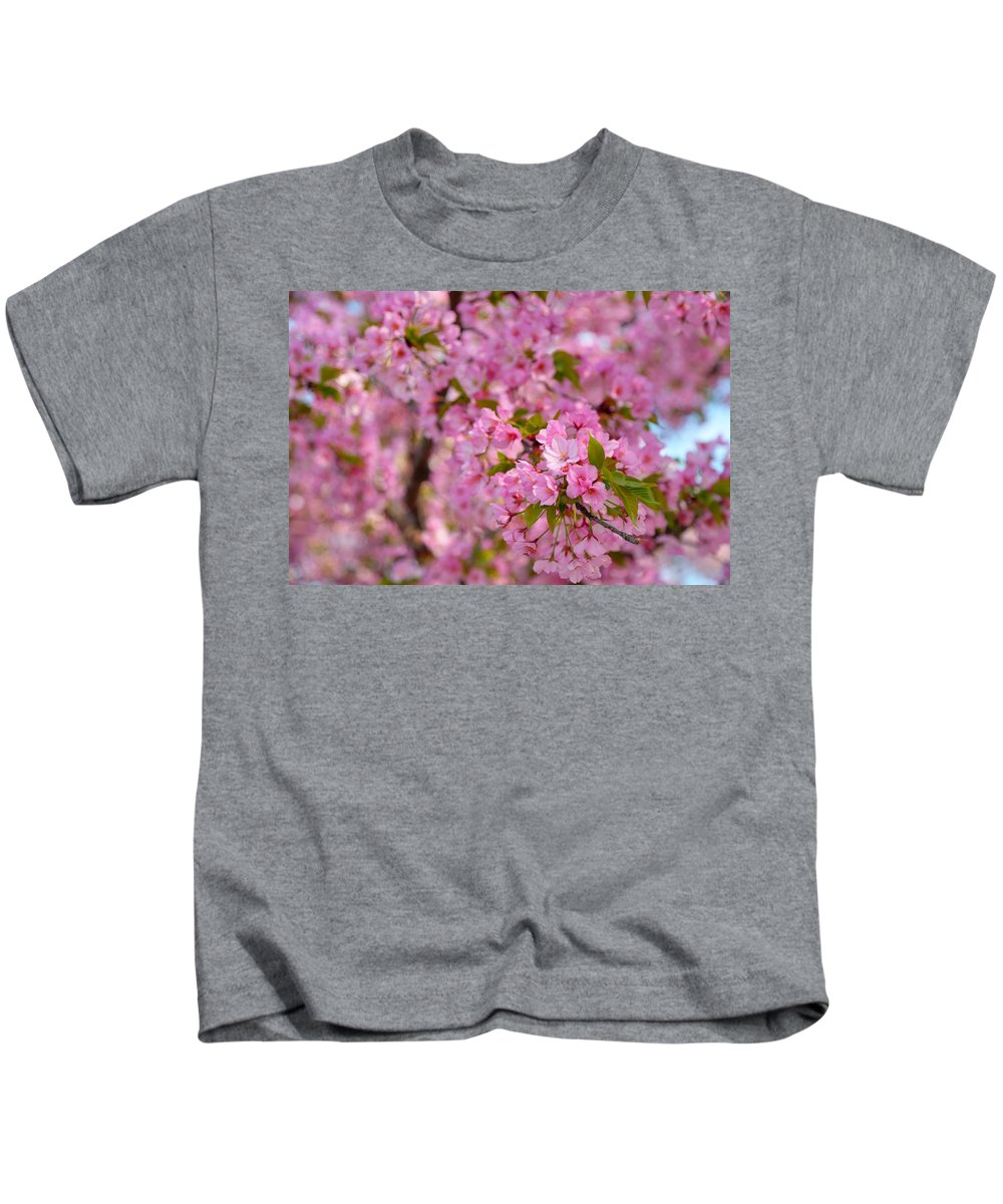 Architectural Kids T-Shirt featuring the photograph Cherry Blossoms 2013 - 096 by Metro DC Photography