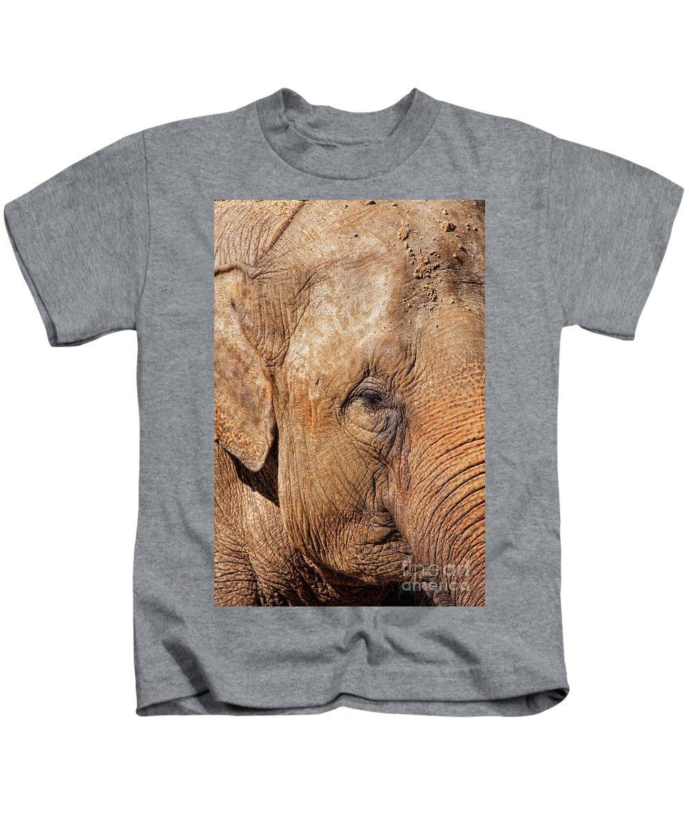 Africa Kids T-Shirt featuring the photograph Closeup Of An Elephant by Nick Biemans