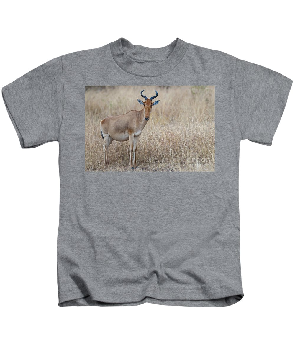 African Fauna Kids T-Shirt featuring the photograph Cokes Hartebeest by John Shaw
