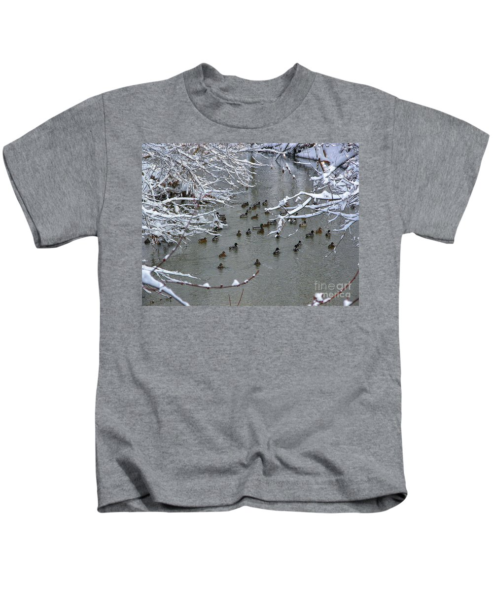 Timothy Hacker Kids T-Shirt featuring the photograph Cold Ducks by Timothy Hacker