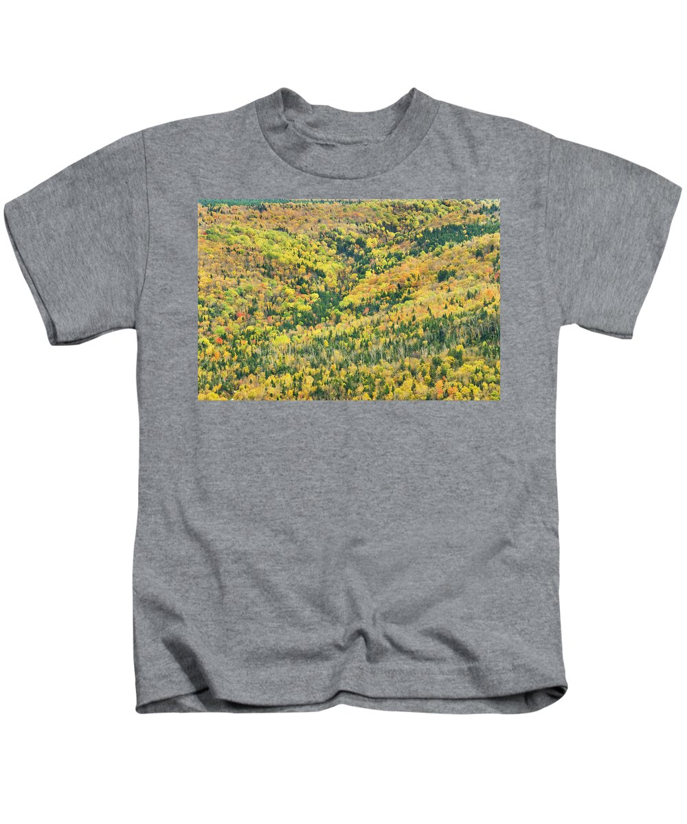 Landscape Kids T-Shirt featuring the photograph Colorful Fall Forest Near Rangeley Maine by Keith Webber Jr