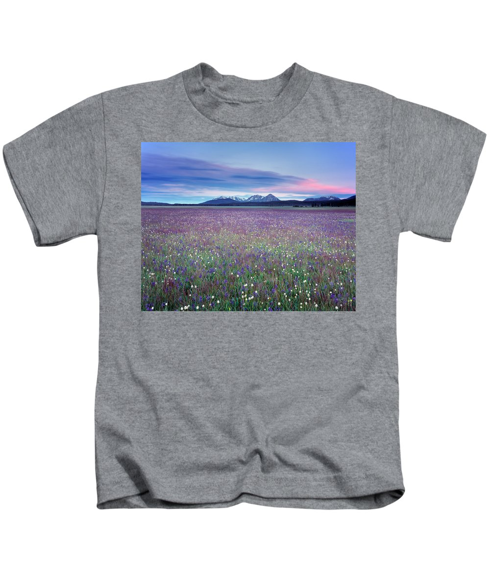 Nature Kids T-Shirt featuring the photograph Colorful Mountain Spring by Leland D Howard
