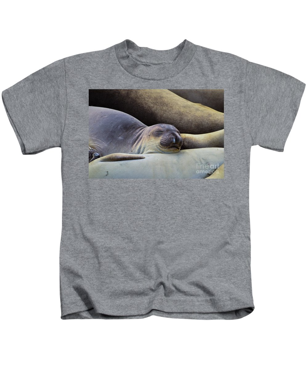Sea Lion Kids T-Shirt featuring the photograph Comforting A Friend by Rich Priest