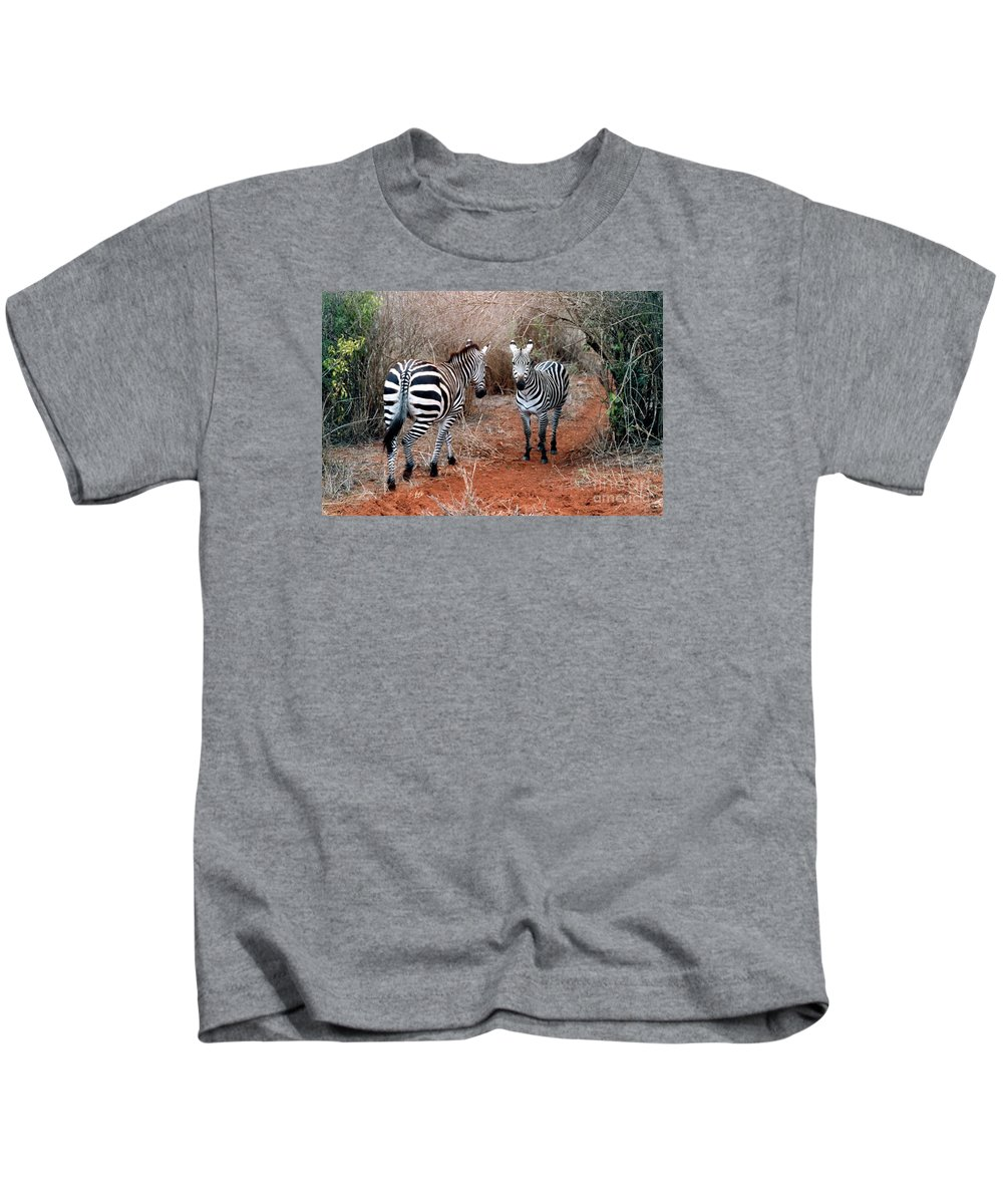 2 Zebras Kids T-Shirt featuring the pyrography Coming And Going by Phyllis Kaltenbach