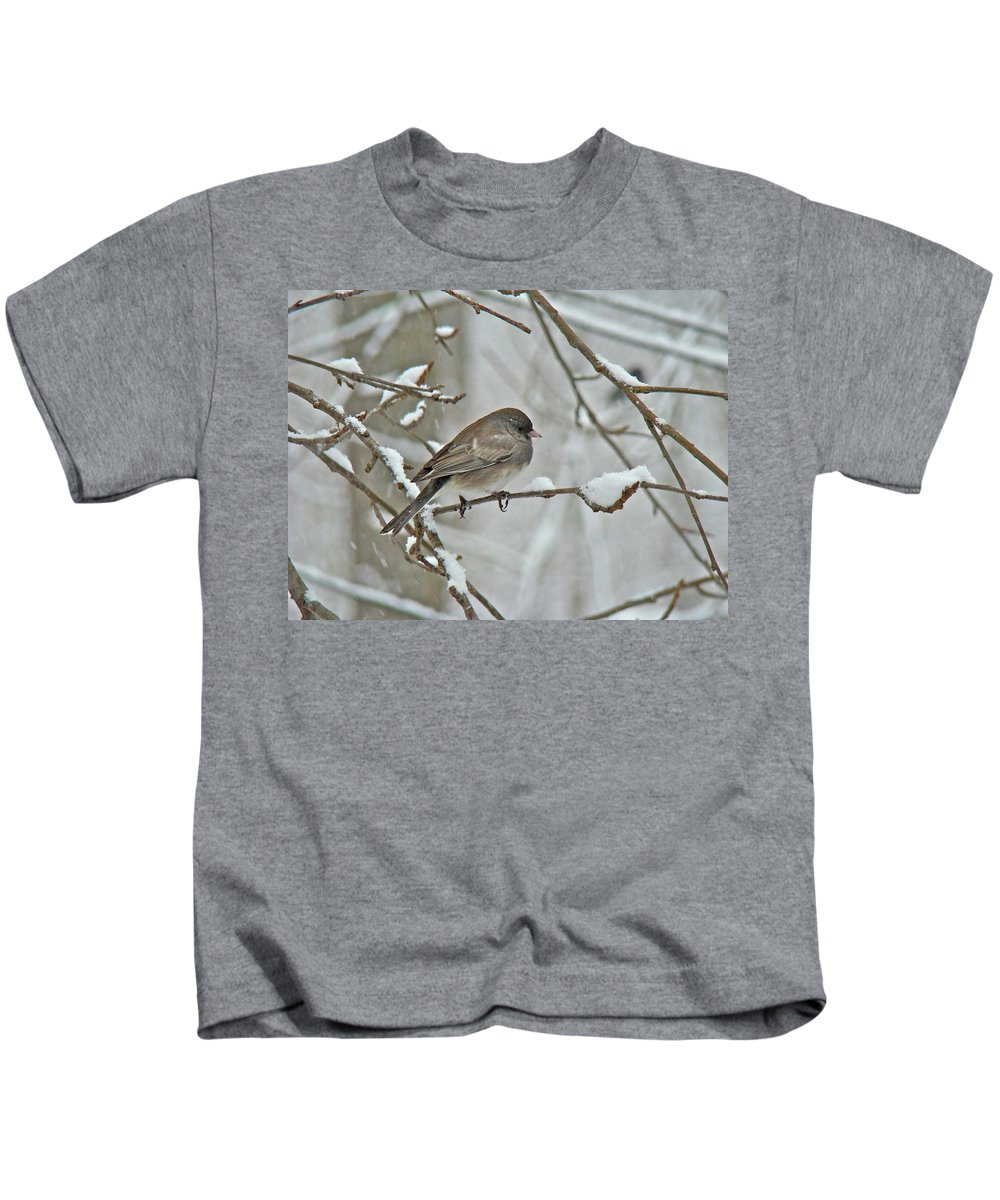 Junco Kids T-Shirt featuring the photograph Dark-eyed Junco Or Snowbird - Junco Hyemalis by Mother Nature