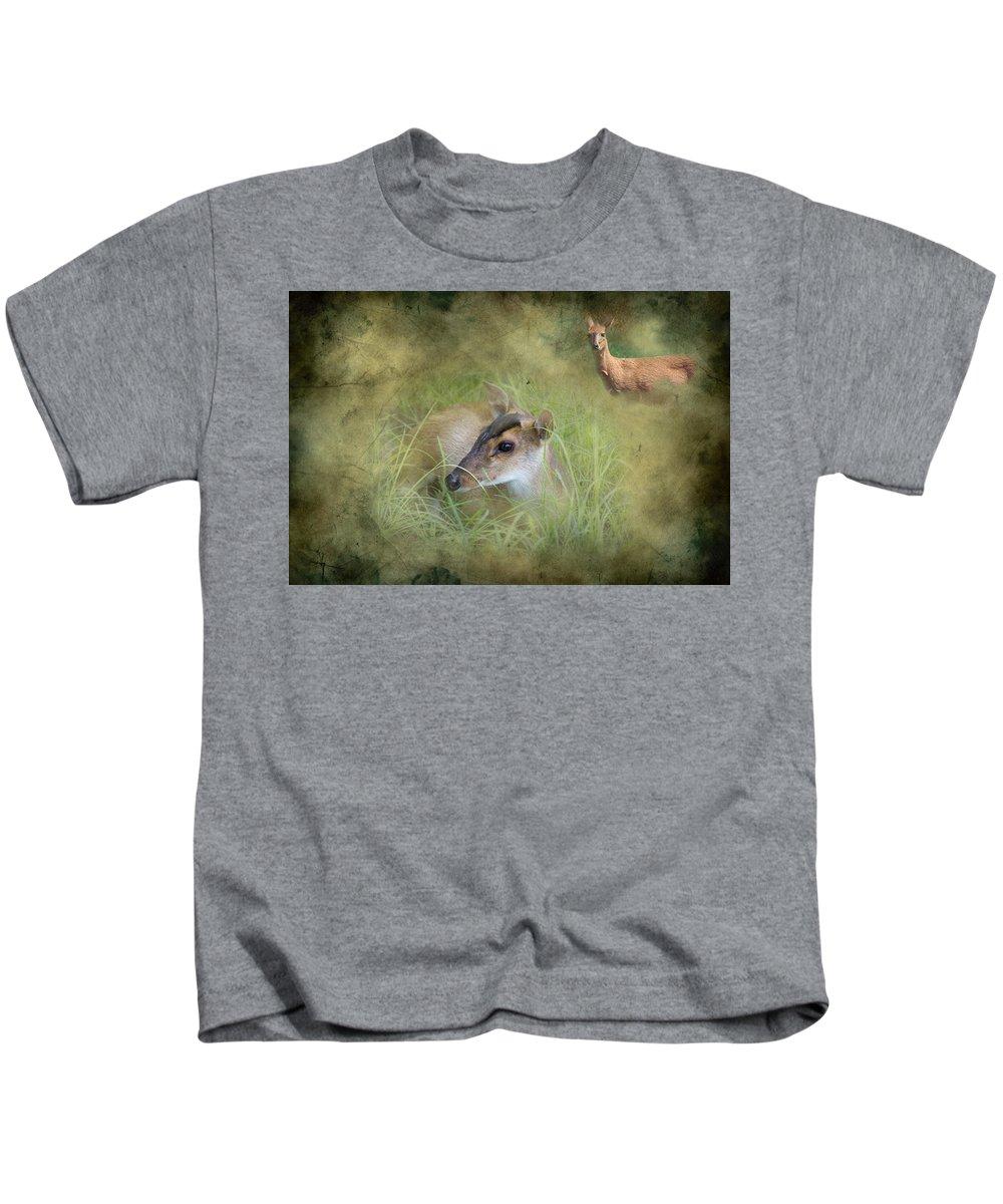 Duiker Kids T-Shirt featuring the photograph Duiker Endangered Antelope by J Darrell Hutto