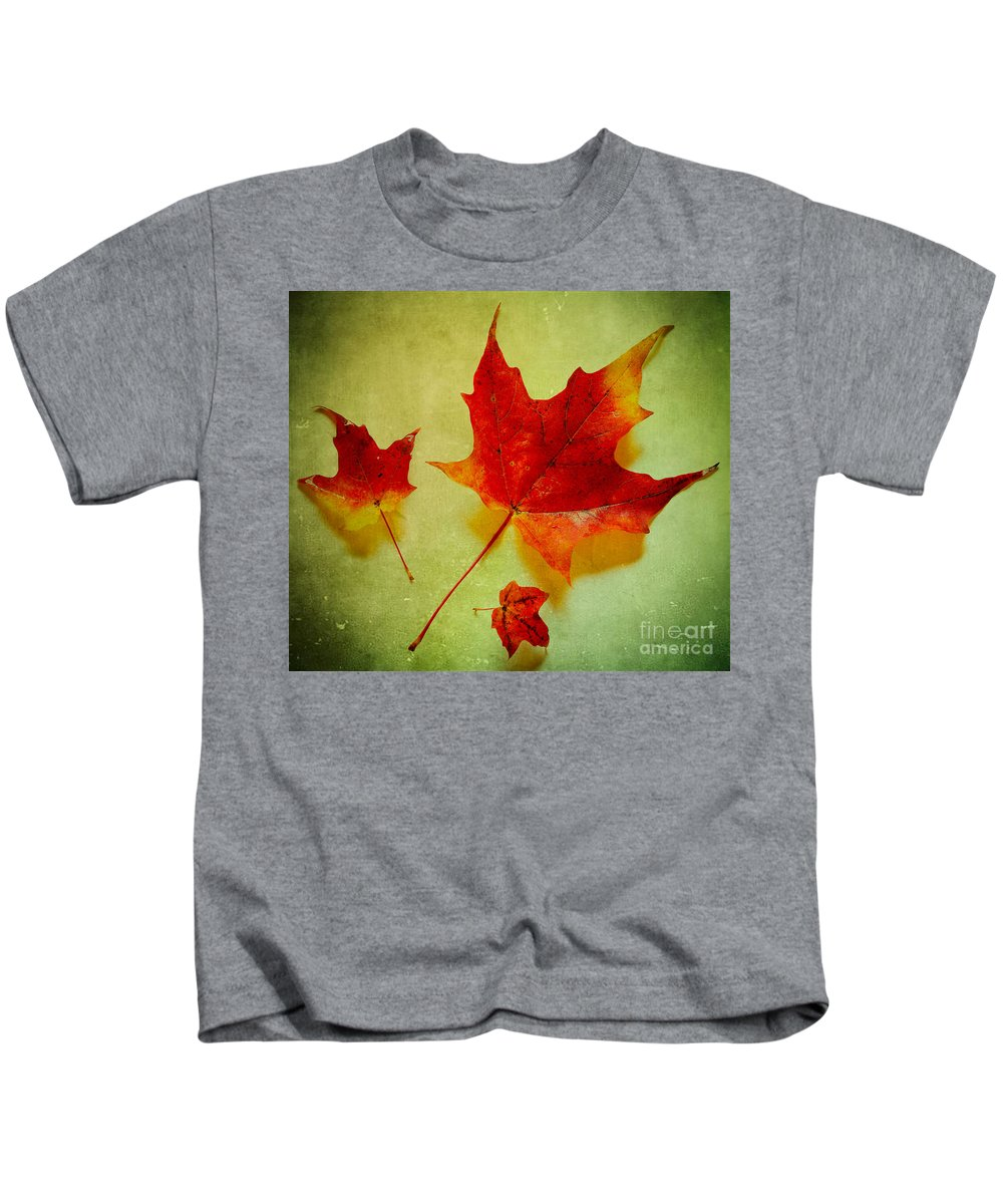 Autumn Kids T-Shirt featuring the photograph Fall Leaves by Inge Johnsson