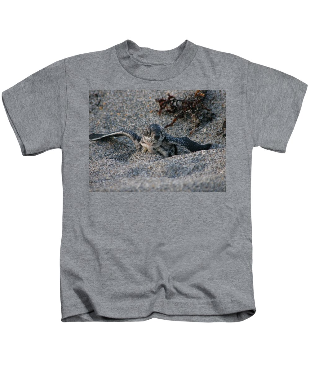 Sea Turtle Kids T-Shirt featuring the photograph First Look by Kimberly Mohlenhoff